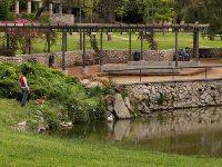 Cornella parc can-mercader jardi estany